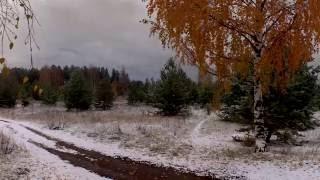 И.А. Бунин Первый снег
