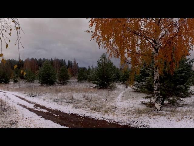 Константин Важенин читает произведение «Первый снег» (Бунин Иван Алексеевич)
