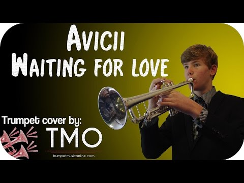 Avicii - Waiting for love (TMO Cover)