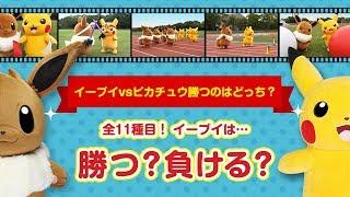 【公式】イーブイ vs ピカチュウ勝つのはどっち? (全11種目総集編) thumbnail