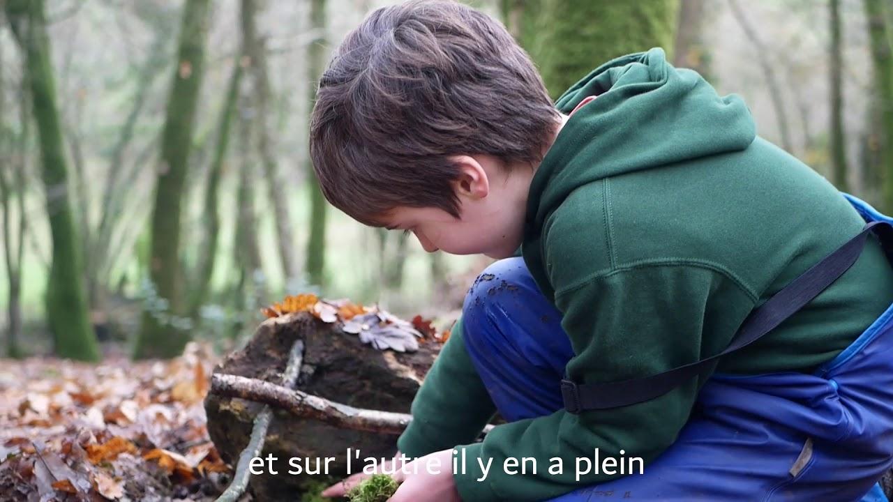 Les pieds sur Terre - Episode 2/6 | Forest School