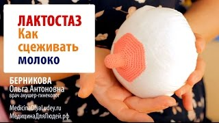 видео помощь при лактостазе