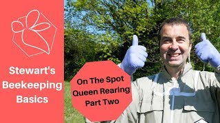 on the spot queen rearing part two stewart spinks at the norfolk honey co