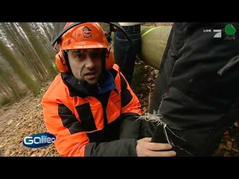 Pfanner CLASSIC Hosenträger für Schnittschutzhose Arbeitshose Träger Gürtel Wald