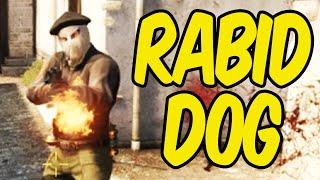 Rabid Dog - CS:GO Funny Moments