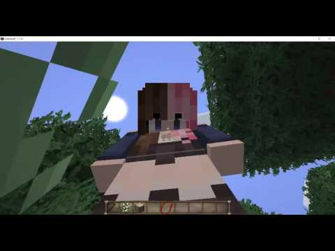 How to make HD Skins (Minecraft PC)