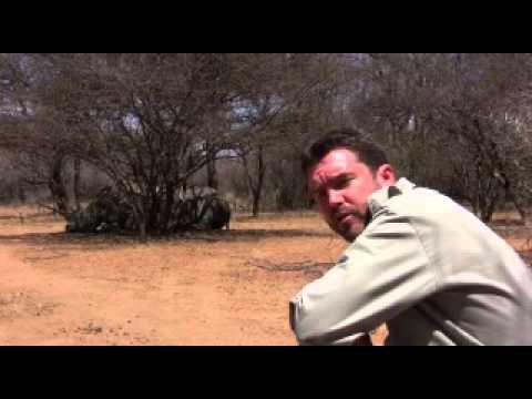 Mokolodi Nature Reserve Rhino Fund (2013)