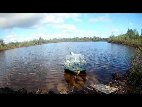 Рыбалка в надыме