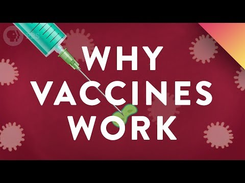 Why Vaccines Work