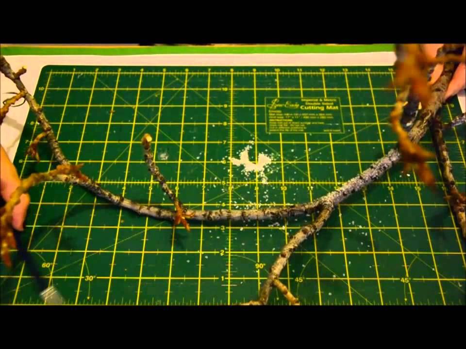 Decorar rama de rbol youtube - Ramas de arboles ...