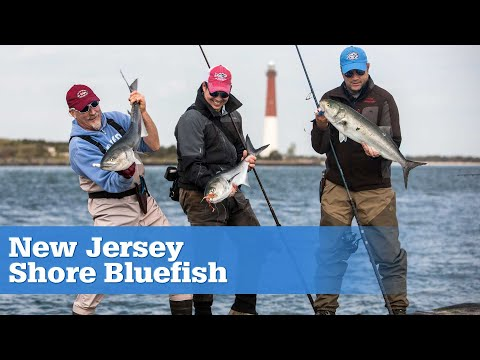 New Jersey Shore Bluefish S15 | E07