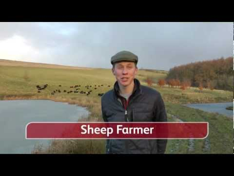 A Spotlight On Sheep Farming With Gareth Barlow