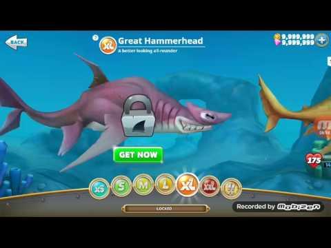 скачать игра голодная акула мод много денег