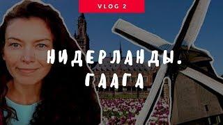 видео Что посмотреть в Антверпене за один день?