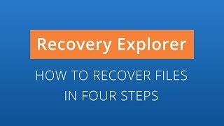Recovery Explorer Professional: data recovery in 4 steps [SysDev Laboratories]