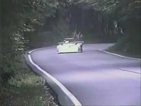 Deer Hit During Race