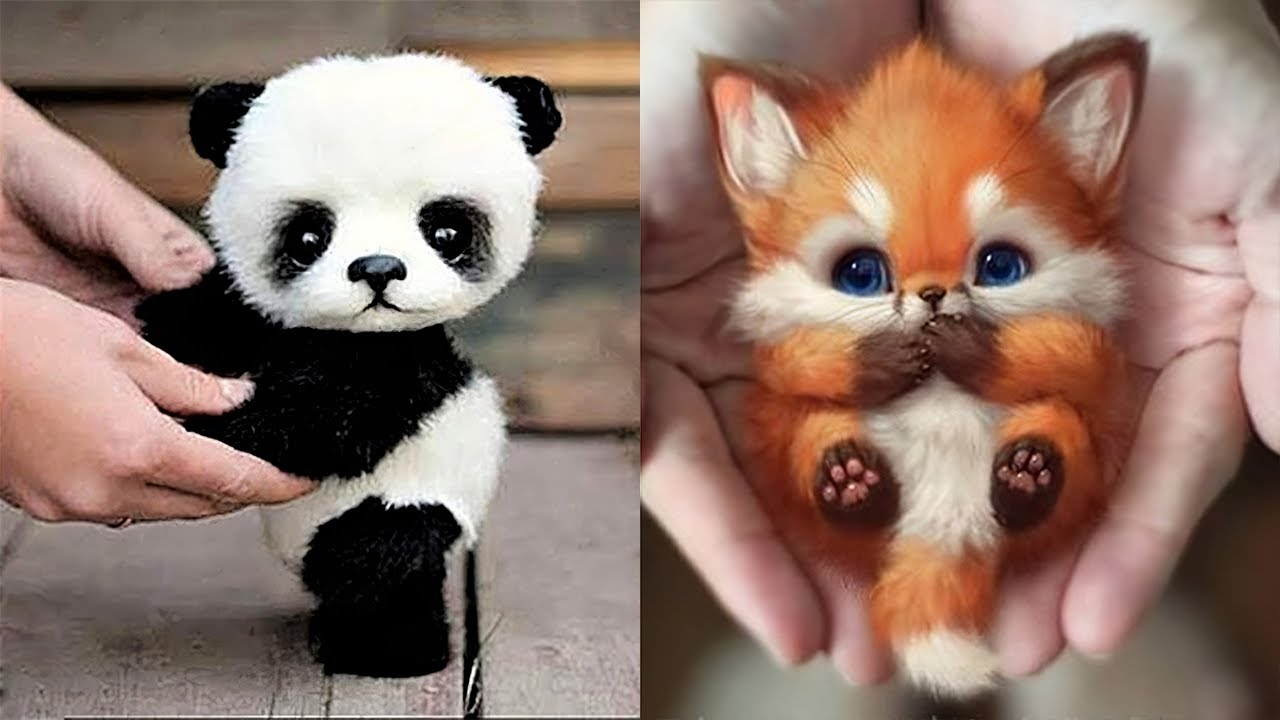 10 Cutest Baby Animals That Will Make You Go Aww