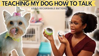 Teaching My Dog How To Talk With Viral Tik Tok Buttons   FluentPet Unboxing