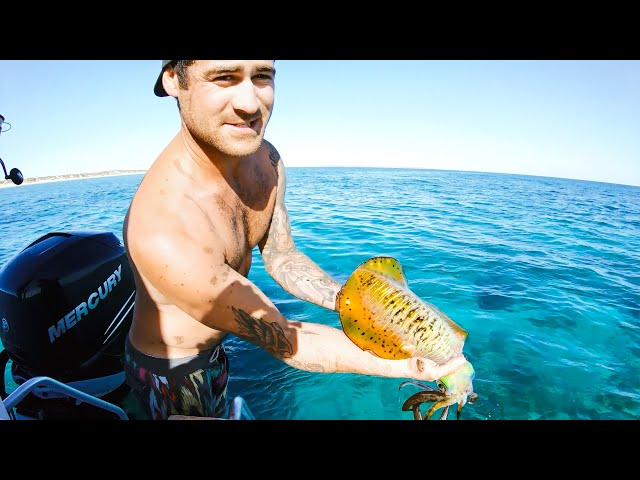 GIANT SQUID CATCH AND COOK Big Reds (New Shimano Fishing Gear) - Ep 92