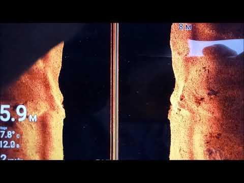 Эхолот Raymarine Element 7 HV, видео с воды 03.04.2019