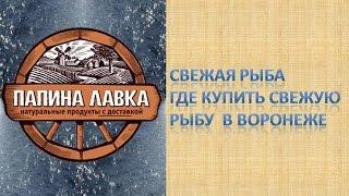 Свежая рыба Где купить свежую рыбу  в Воронеже(, 2015-03-04T07:11:14.000Z)