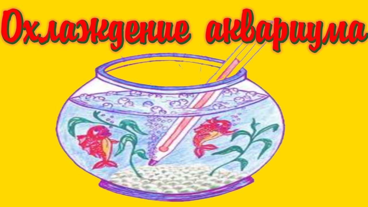 Охлаждение аквариума  кулерами, вентиляторами! [#Аквариумные рыбки]