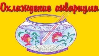 Охлаждение аквариума  кулерами, вентиляторами! [#Аквариумные рыбки](Охлаждение аквариума кулерами, вентиляторами! Аквариумный холодильник- http://ali.pub/3qvd6 Видео про рыбок - https://www..., 2016-07-09T17:13:46.000Z)