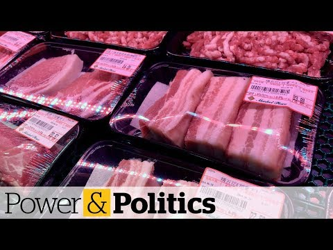 China Lifts Canadian Pork And Beef Ban | Power & Politics