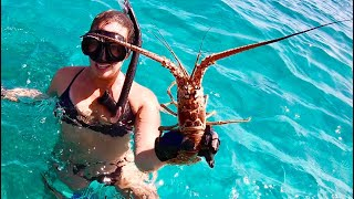 LOBSTER catch clean and cook in Islamorada