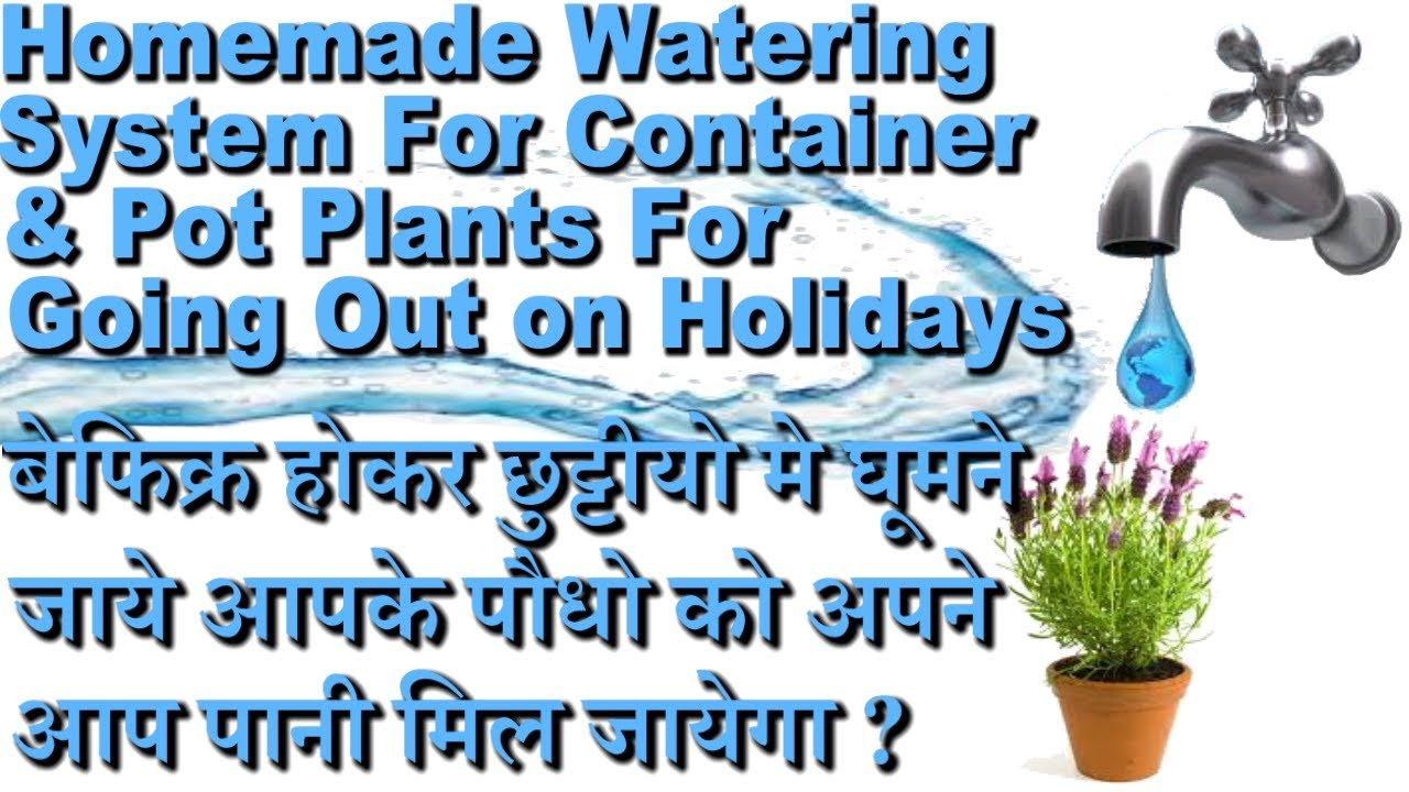 Auto Watering System For Plants While On Vacation & Holidays