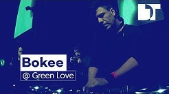 Bokee at Green Love Festival, Novi Sad (Serbia)