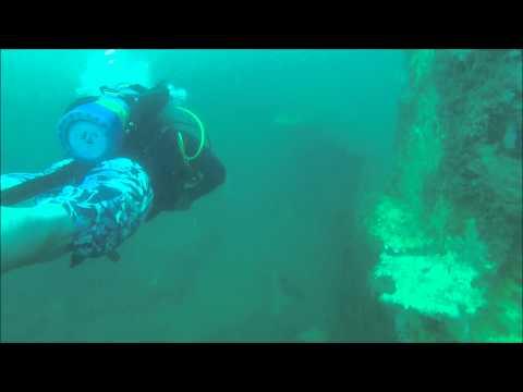 Sea Dog Dive Shop Wreck Dives