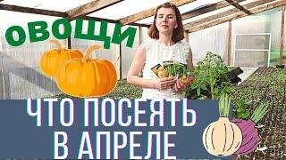 Какие овощи посеять в апреле на рассаду и в открытый грунт
