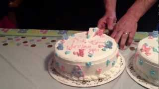 Twin baby gender cake reveal