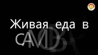 видео Урбеч из семян конопли (225 г) - Живой продукт купить в Новосибирске