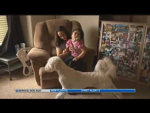 Colorado Dept. of Agriculture investigating local service dog business