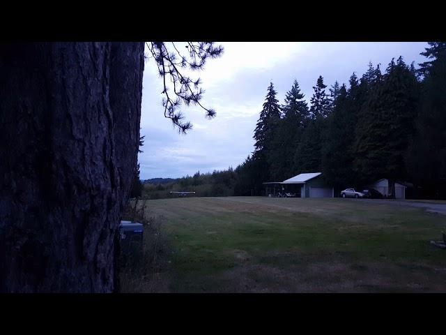 Joe landing Cessna 170 at home 650' grass airstrip