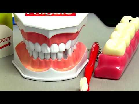 Bronx Now: Hutchinson Metro Dental