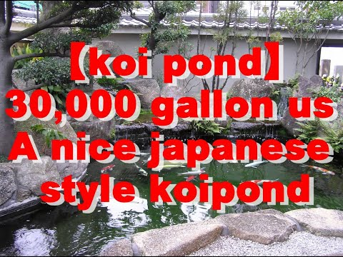 30,000 gallon a nice japanese style koipond Filtration system Supermarine NEW-520*3
