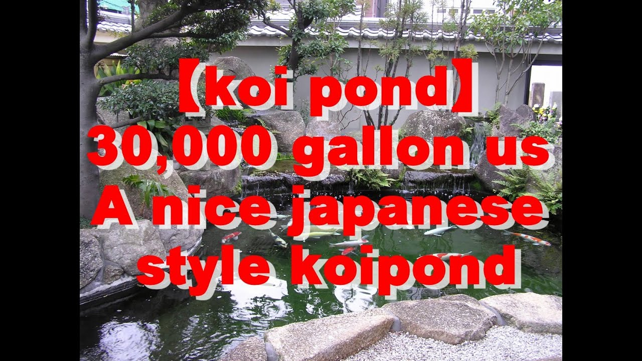 Koi pond 30 000 gallon a nice japanese style koipond for Koi pond japan
