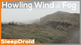 ►Heavy Howling Wind Sounds for Sleeping ~10 hours of Ambient Storm Sounds and Fog, Viento