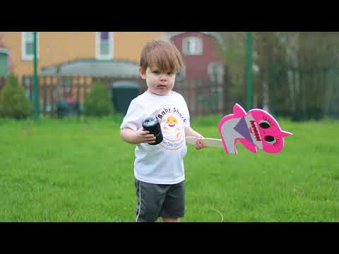 WE LOVE PINKFONG BABY SHARK - Alexis Petrosky