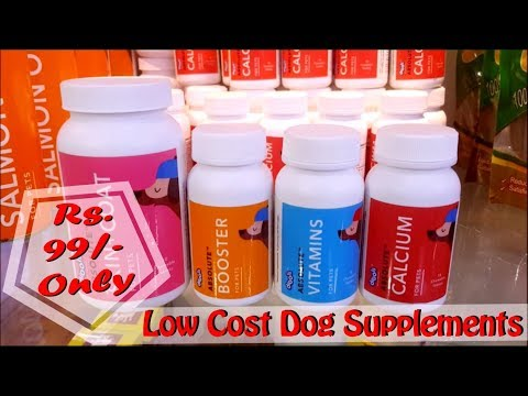 Low Cost Dog Supplements | Salmon oil | Vitamin Supplement