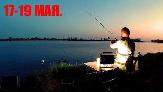 Рыбалка Двое Суток на Нижней Мо Реке Клёвая Жаркая Майская Рыбалка Лещ Карась Плотва Жерех