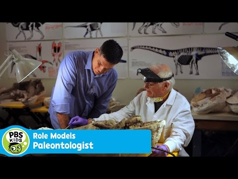 ROLE MODELS | Dr. Scott Sampson | PBS KIDS