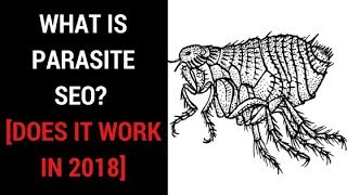 What is Parasite SEO? – 2018 Parasite SEO Guide [Tutorial]
