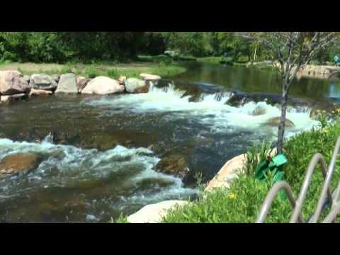Wellfield Botanic Gardens, WLKRT Elkhart, Indiana - YouTube