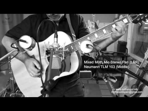 Moth Mic - The Real Retrophonic Sound - Acoustic Guitar Demo