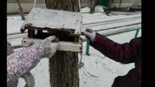 Экология(Видео для школьного конкурса) Саратов 93 школа 6Б., 2013-03-26T07:56:28.000Z)