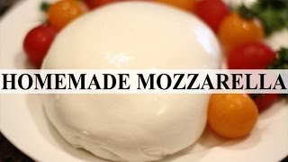 Easy Homemade Mozzarella